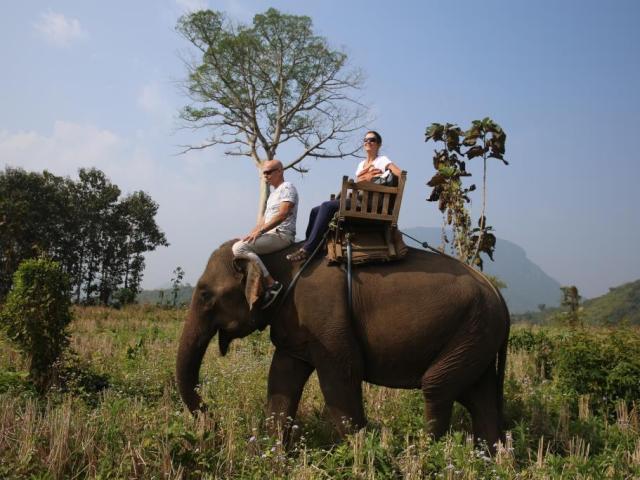Luang Prabang - elephant camp