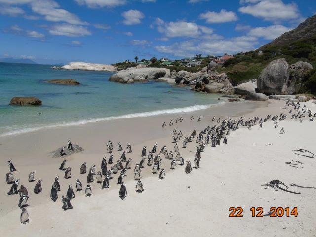 Península. África do Sul