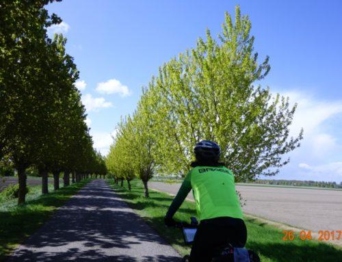 Países Baixos pedalando