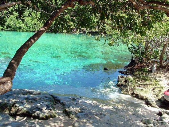 casa-cenote (1)